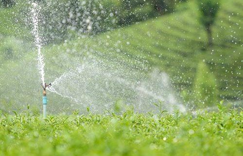 Sistemas de Bombeo de Agua a Alta Presión en la Industria de Alimentos